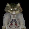 Deep Space Pussy Icon